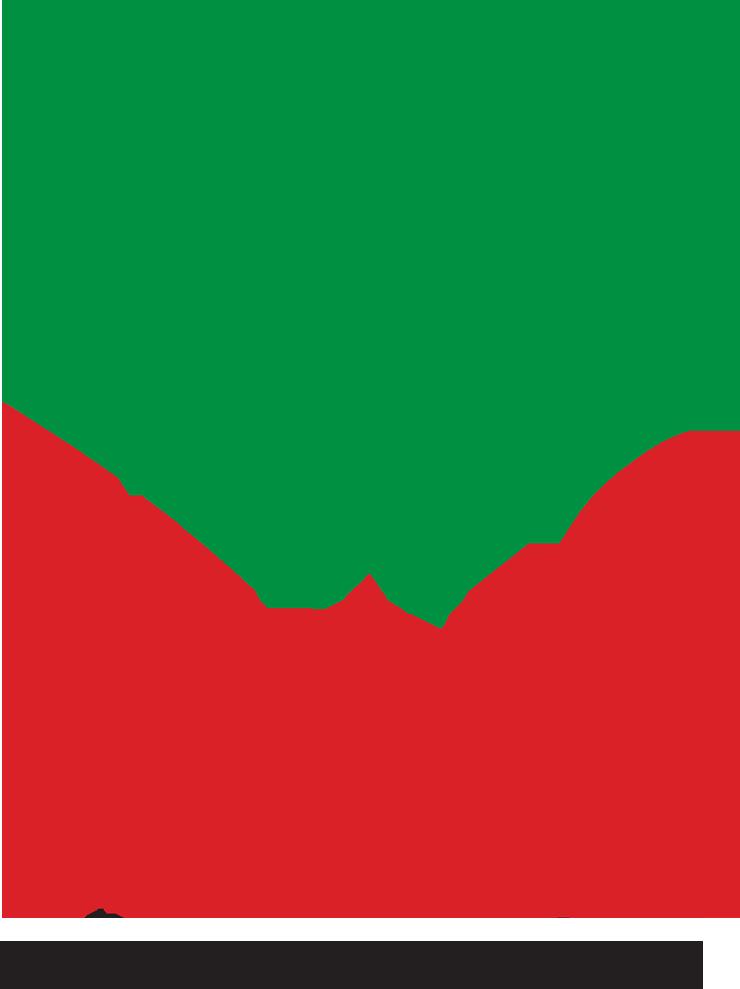 Ferio Konin